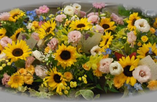花の日・こどもの日合同礼拝のご案内